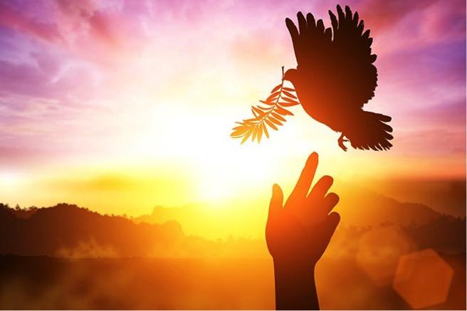 El testimonio del Espíritu Santo | Tabernaculo Prensa de Dios